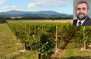 Domaine_Chandon_Australia_vineyard__1412276051_103.4.145.210[1]