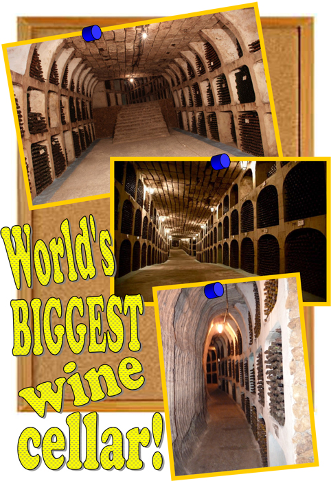 Microsoft Word - worlds biggest wine cellar